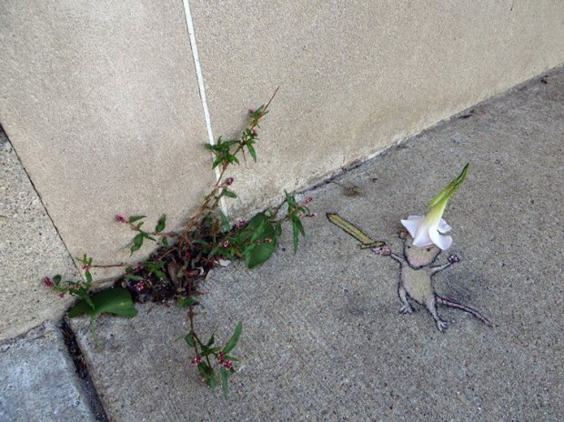 David Zinn, Michigan, Etats-Unis